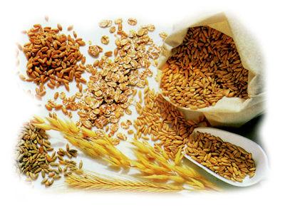fibre-alimentari.jpg