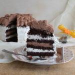 Chocolate cake bigusto senza glutine